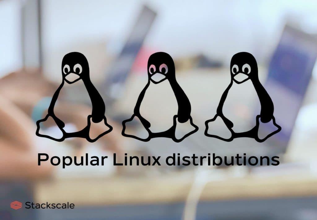 Popular Linux distributions