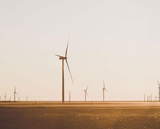 Sustainability and renewable energies